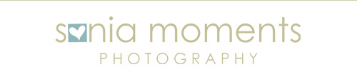 Limpopo Photographer Logo Image
